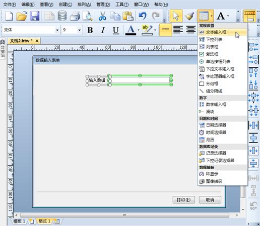 如何使用BarTender的表单输入框控件?
